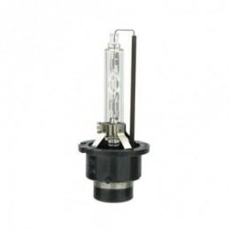 Lampe Xénon D2S / 4300 K (Kelvin), Ampoules / Feux de jour